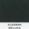 au2589n